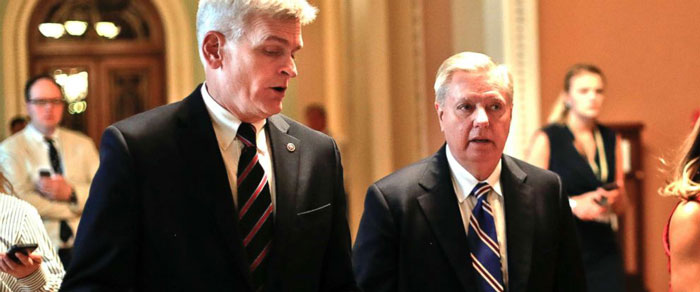 Bill Cassidy and Lindsey Graham